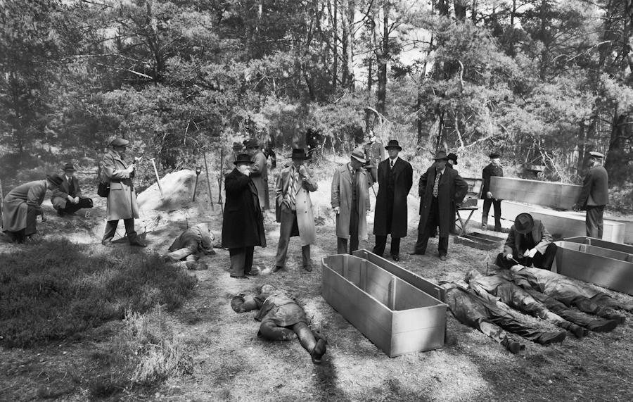 Die Mordkommission im Kiefernwald